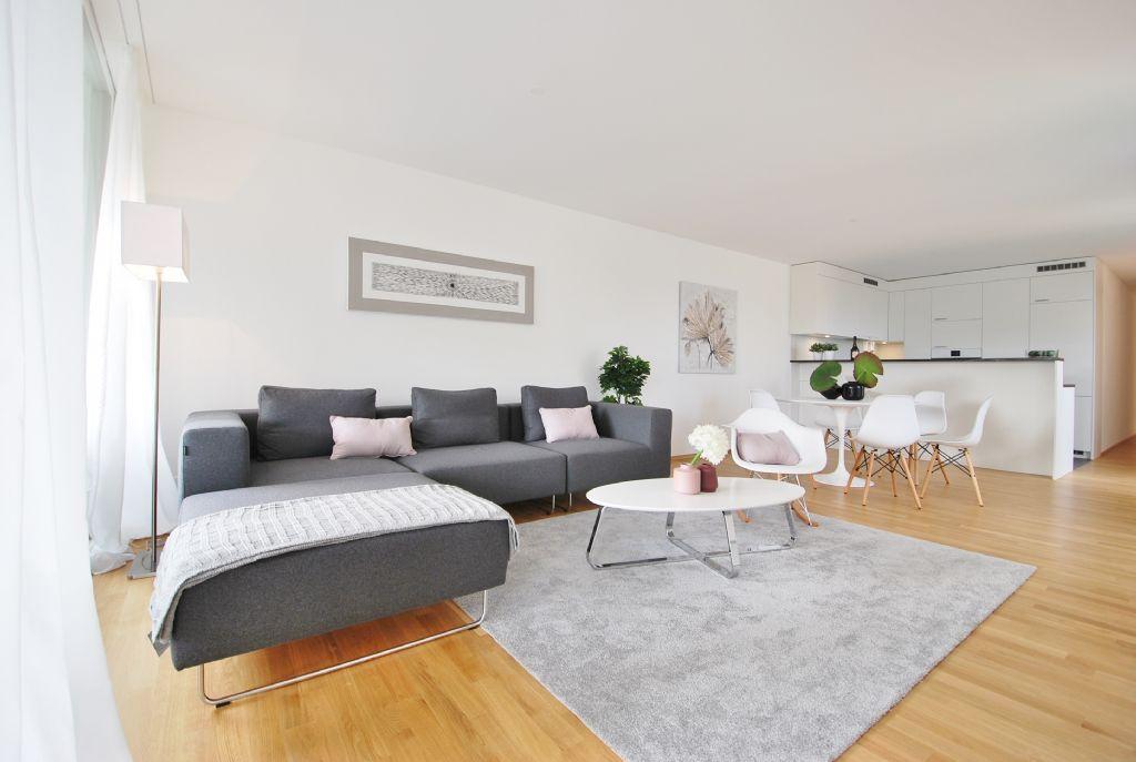 mieten immobilien angebot die immobilien treuh nder straub partner ag die immobilien. Black Bedroom Furniture Sets. Home Design Ideas